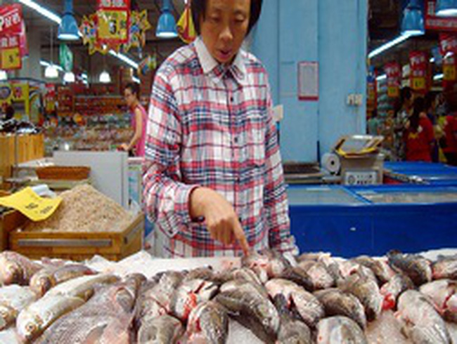 Hàng đông lạnh Trung Quốc đầy chất cấm