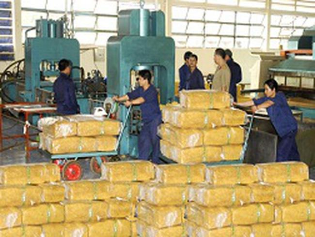 Sẽ giảm thuế xuất khẩu cao su?