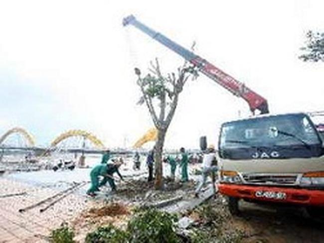 Đà Nẵng: Các mặt hàng vẫn giữ giá ổn định sau bão