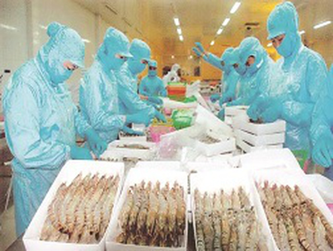 Doanh nghiệp thủy sản: Nặng gánh thủ tục hành chính