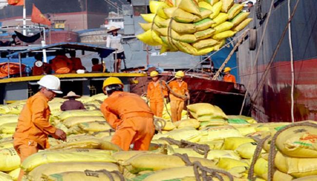 Lại hạ mục tiêu xuất khẩu gạo