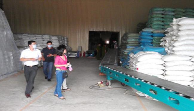 Rất ít lúa được bán trực tiếp cho doanh nghiệp xuất khẩu
