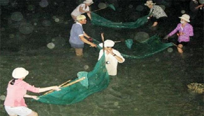 Người dân trúng đậm cá chình trên sông Cái