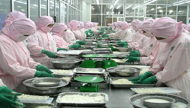 Doanh nghiệp thủy sản lo ngại nạn bơm chất agar vào tôm xuất khẩu