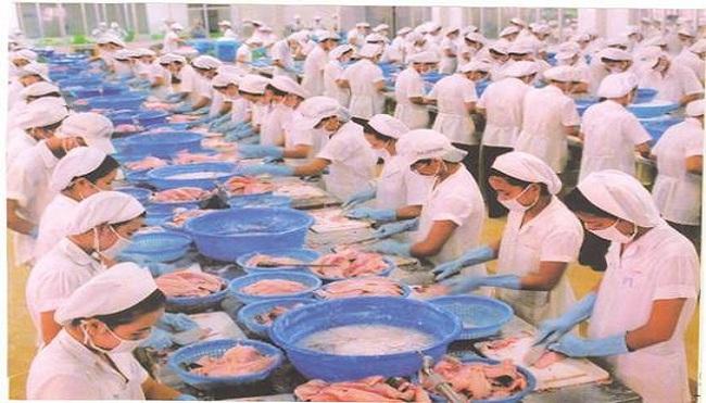 Thủy sản Việt Nam khó lòng vào Mỹ