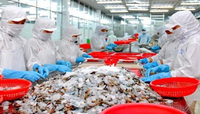 Việt Nam thuộc top 5 nước xuất khẩu tôm lớn nhất vào Mỹ