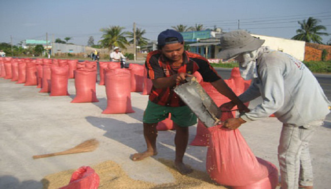 Kiến nghị thu mua tạm trữ 1 triệu tấn gạo trong 4 tháng