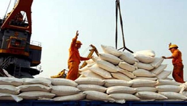 Giá gạo xuất khẩu lẫn nội địa tăng nhẹ