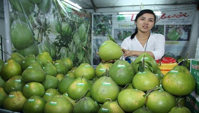 Giảm lệ thuộc vào Trung Quốc: Rau quả chuyển hướng xuất khẩu