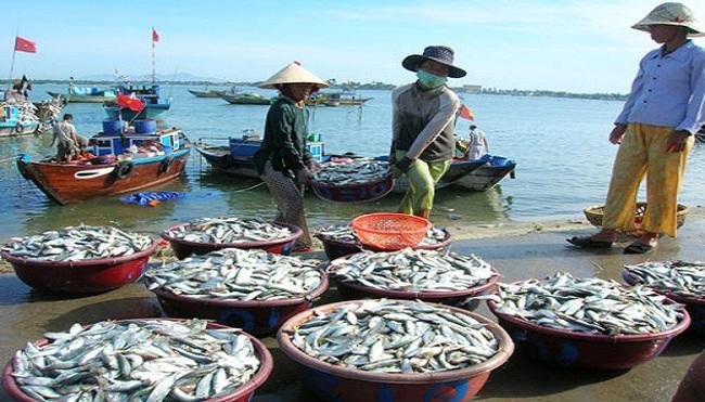 Trung Quốc quấy rối, khai thác hải sản vẫn tăng