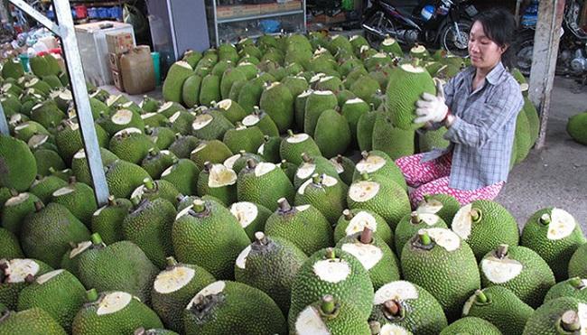 Trái cây, rau củ... sang EU, Ấn Độ