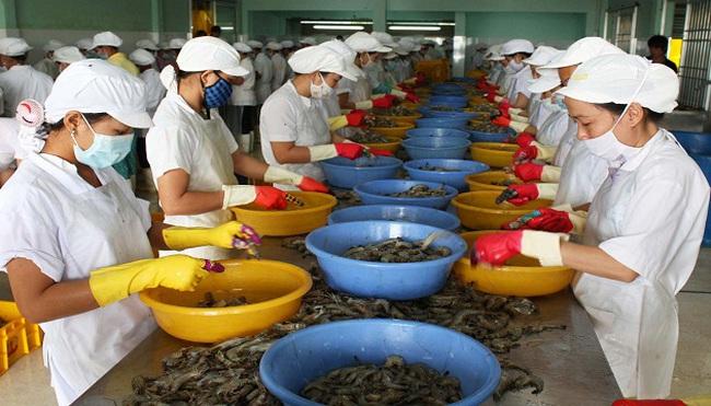 Xuất khẩu tôm sang EU sẽ tăng trưởng mạnh trong 2014