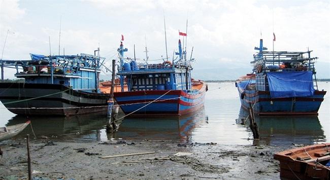 Tàu thuyền nằm bờ chờ giá cá