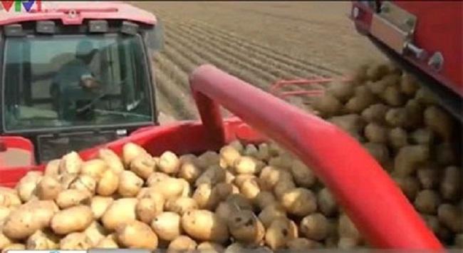 Nga tìm kiếm nguồn thực phẩm nội địa thay thế hàng từ EU