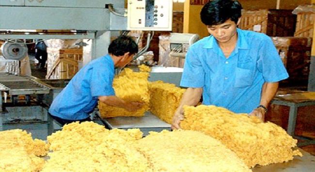 Chính thức miễn thuế xuất khẩu cao su tự nhiên