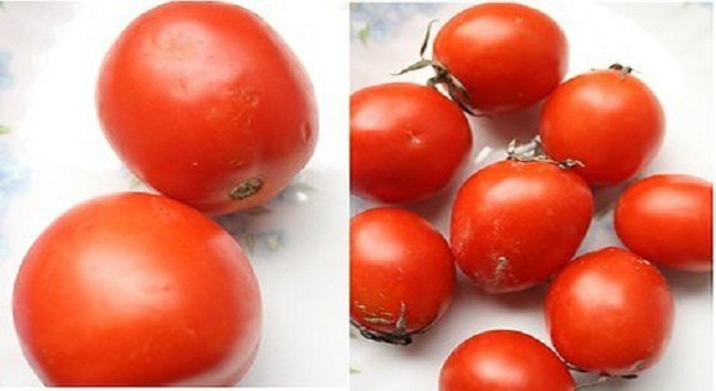 Cà chua trong nước rớt giá vì hàng Trung Quốc