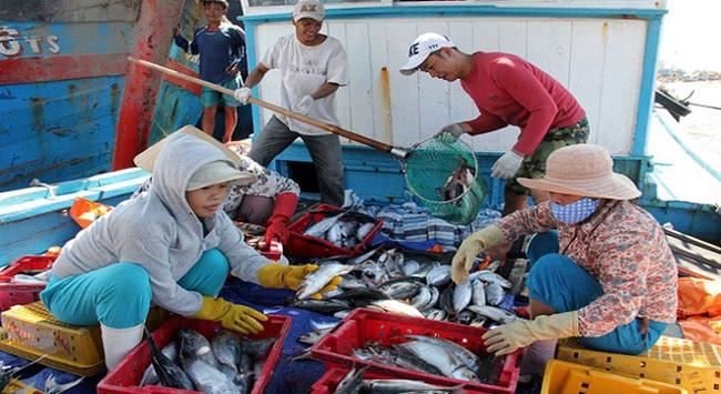 Cách vài cây số, giá cá tăng 2-3 lần