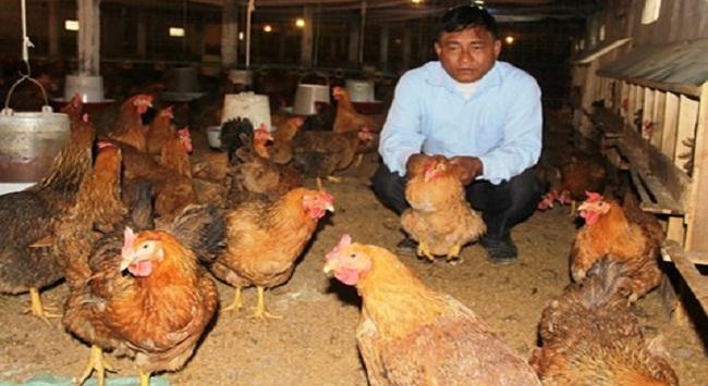 Thuế VAT thức ăn chăn nuôi về 0%: Lợi đã thấy nhưng chưa hết lo