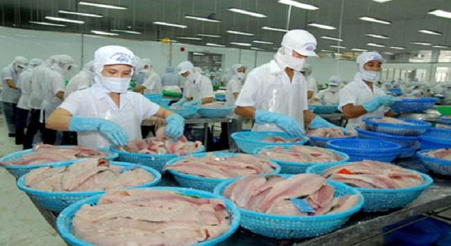 Xác minh thông tin Brazil tạm ngừng NK thủy sản Việt Nam