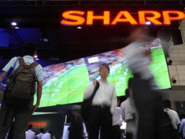 Cổ phiếu Sharp tăng mạnh nhất 38 năm