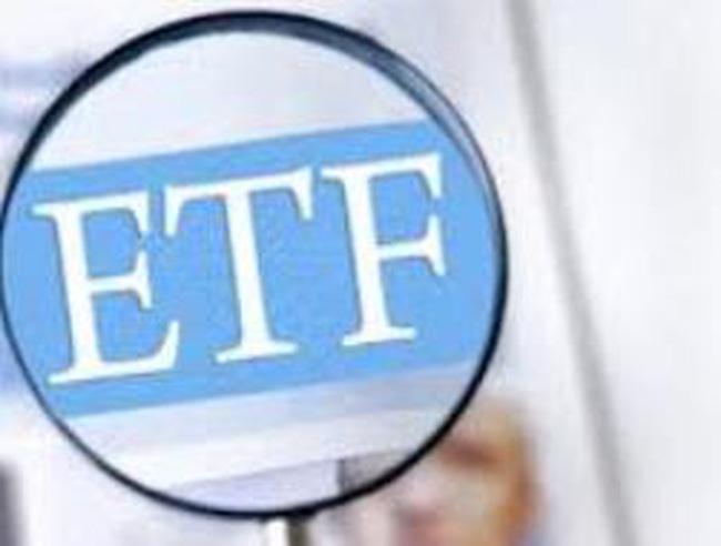 Tỷ trọng cổ phiếu ngành tài chính lớn là rủi ro lớn nhất của Vietnam Market Vector ETF
