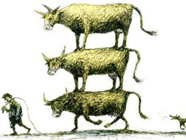 Ngân hàng gia súc: Mô hình độc đáo ở Zimbabwe