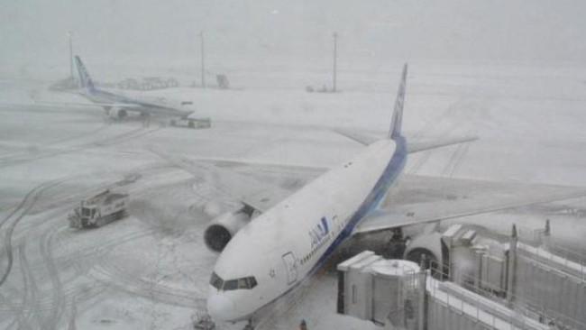 Bão tuyết ở Nhật Bản: 3 người chết, hơn 400 người bị thương