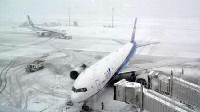 Mỹ, Nhật khốn đốn vì bão tuyết bất thường