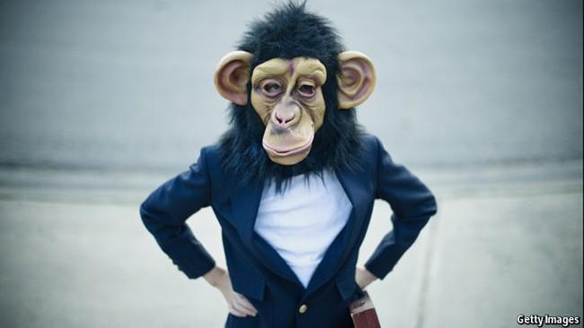 """""""Khỉ ném phi tiêu"""" và bước đi ngẫu nhiên trên thị trường chứng khoán"""