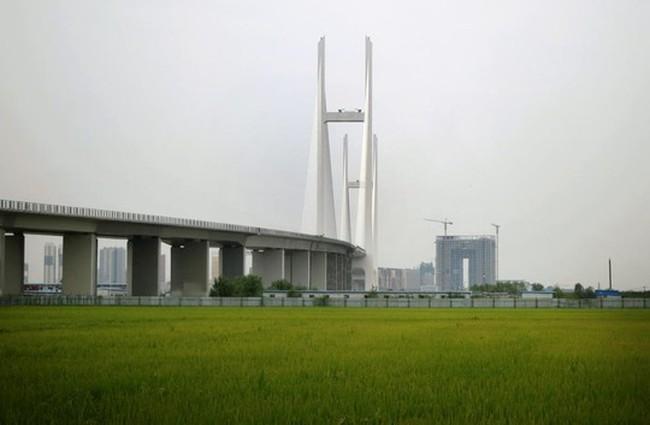 Cầu triệu đô Trung Quốc – Triều Tiên phủ bụi