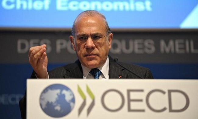 OECD: Khoảng cách giàu-nghèo cao nhất trong vòng 30 năm qua
