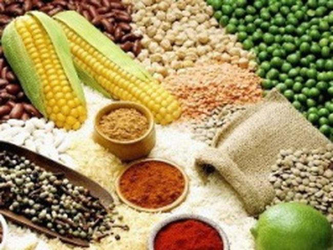 FAO cảnh báo nguồn cung lương thực giảm mạnh