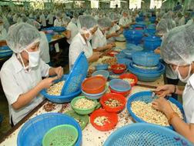 Mỹ khuyến cáo các DN chế biến nông sản Việt Nam