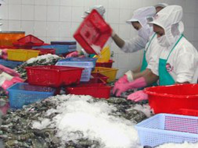 Kim ngạch xuất khẩu tôm cả năm đạt 2,25 tỷ USD