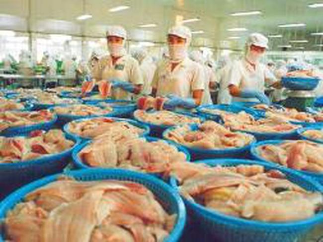 Ngành cá tra xuất khẩu: mong ngân hàng làm cổ đông