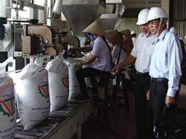 Nâng thuế nhập khẩu đường lên tới 40% để bảo vệ ngành mía đường trong nước
