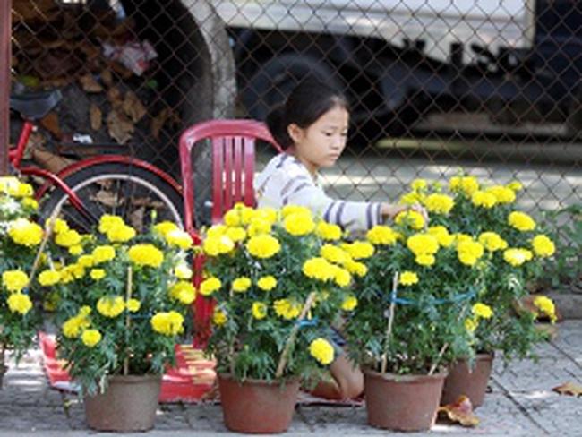 """Chợ hoa """"xả hàng"""""""