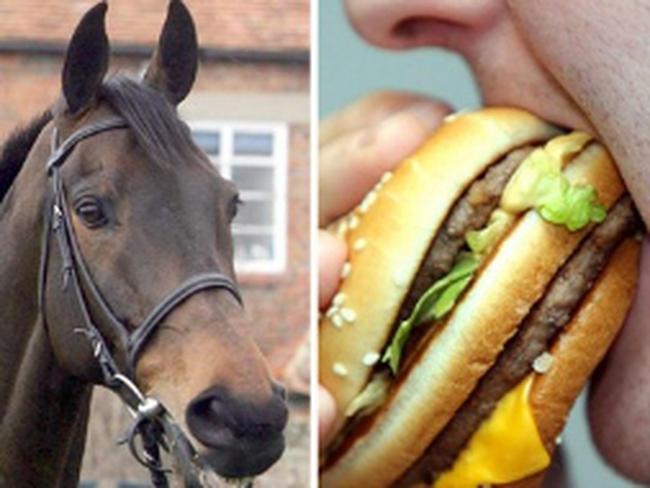 """Châu Âu tai tiếng vì bê bối thịt ngựa """"đội lốt"""" thịt bò"""