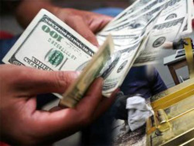 Ủy ban Giám sát Tài chính: Thị trường ngoại tệ những tháng cuối năm sẽ ổn định