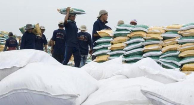 Năm 2014: Nhu cầu 11 triệu tấn phân bón