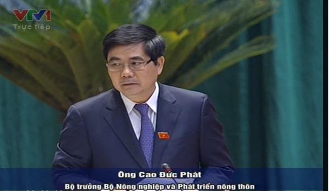 Bộ trưởng Cao Đức Phát: Thu mua tạm trữ lúa gạo chỉ là giải pháp tình thế