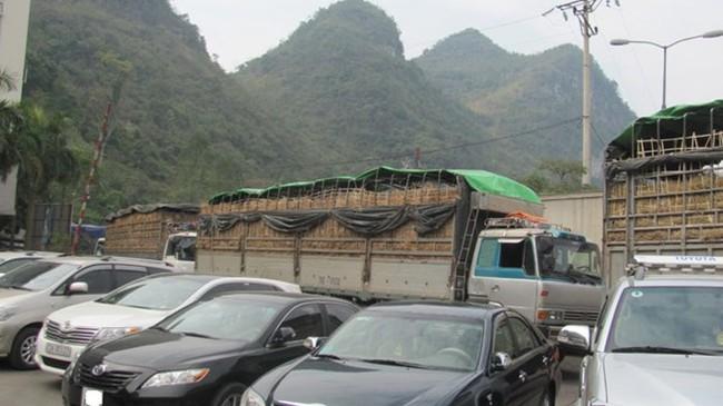 Hàng trăm xe hoa quả ùn tắc tại cửa khẩu Tân Thanh
