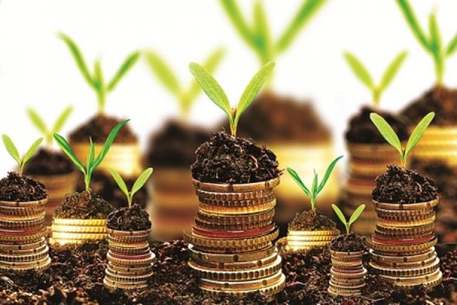 Cho vay không đảm bảo bằng tài sản có gây ra nợ xấu?