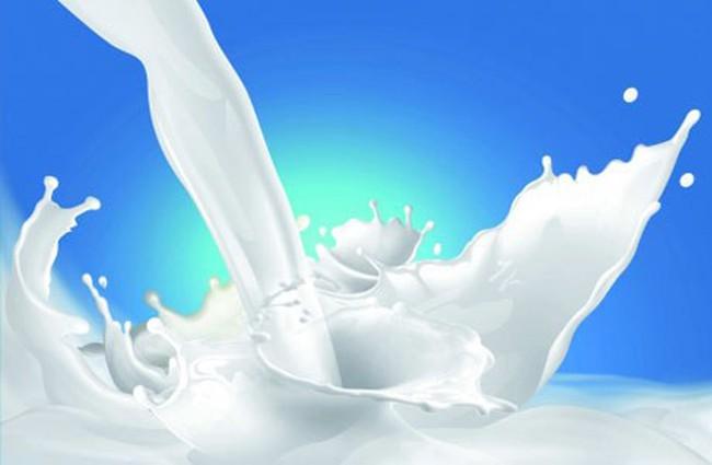 Khó giảm giá sữa