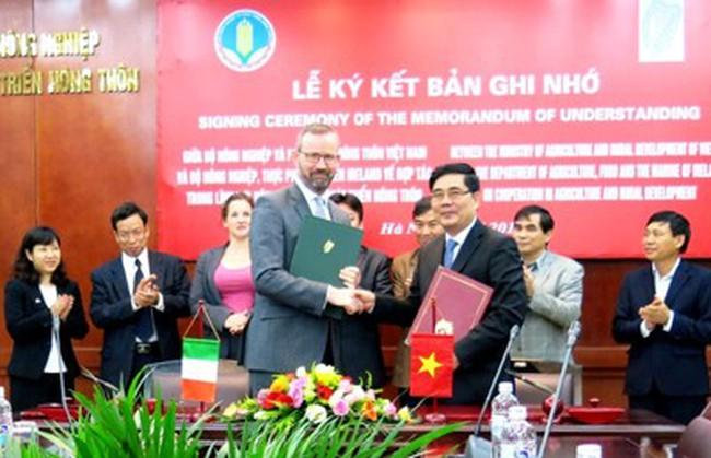 Việt Nam-Ireland hợp tác phát triển nông nghiệp