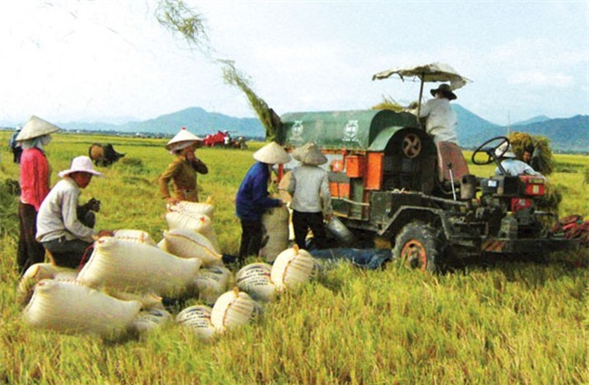Tái cơ cấu nông nghiệp: Cần lấy nông dân làm gốc
