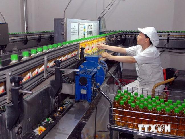 Coi thu hút FDI là động lực quan trọng trong phát triển kinh tế