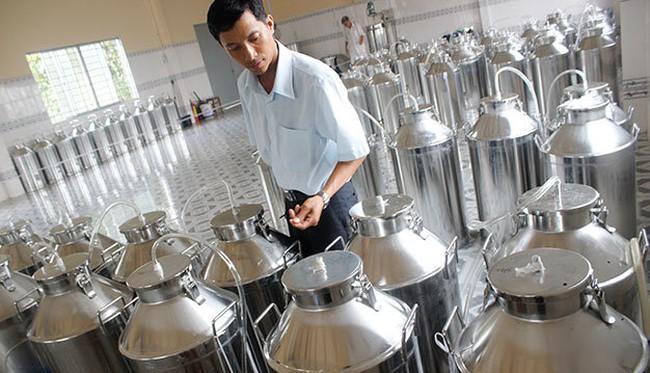 Nông dân sản xuất rượu thanh long