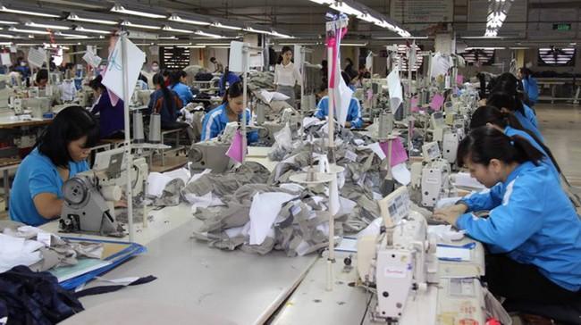 Xuất khẩu dệt may Việt Nam có thể chạm mốc 24,5 tỷ USD