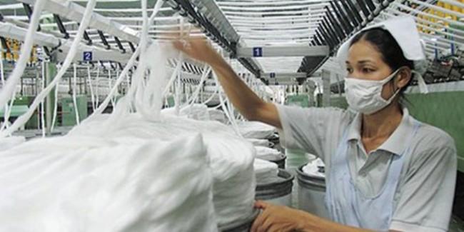 Đẩy mạnh nhập khẩu bông sợi từ Tây-Trung Phi